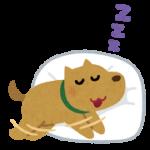 ネルノダって眠れるのかな?試してみた。